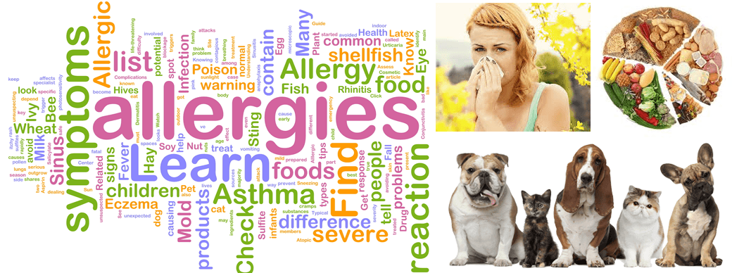 Energy and Allergies | Allergy Elimination | Healer